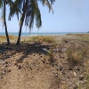 freehold land for sale Bajawa Flores