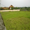 freehold land for sale Canggu Bali