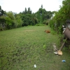 freehold land for sale Petitenget Bali